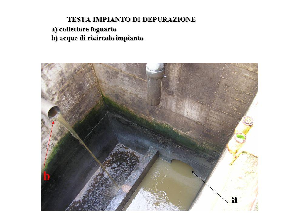 TESTA IMPIANTO DI DEPURAZIONE a) collettore fognario b) acque di ricircolo impianto TESTA IMPIANTO DI DEPURAZIONE a) collettore fognario b) acque di r