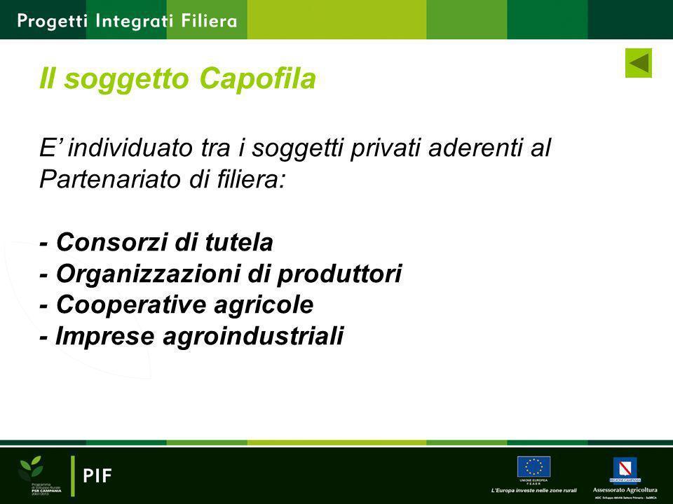 E individuato tra i soggetti privati aderenti al Partenariato di filiera: - Consorzi di tutela - Organizzazioni di produttori - Cooperative agricole -