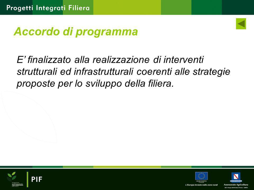 Accordo di programma E finalizzato alla realizzazione di interventi strutturali ed infrastrutturali coerenti alle strategie proposte per lo sviluppo d