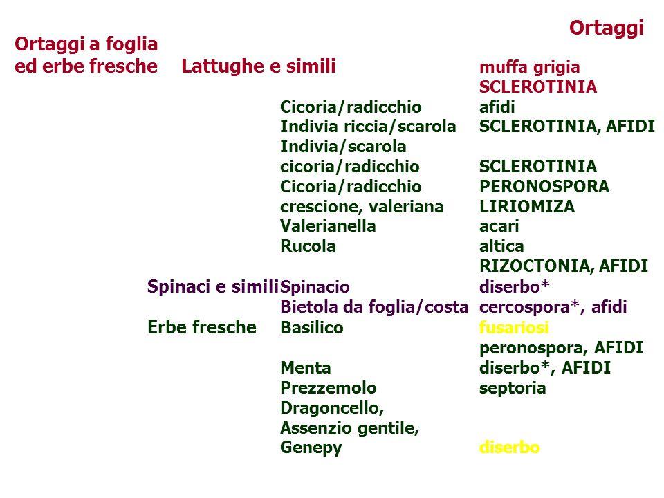Ortaggi a foglia ed erbe fresche Lattughe e simili muffa grigia SCLEROTINIA Cicoria/radicchioafidi Indivia riccia/scarolaSCLEROTINIA, AFIDI Indivia/sc