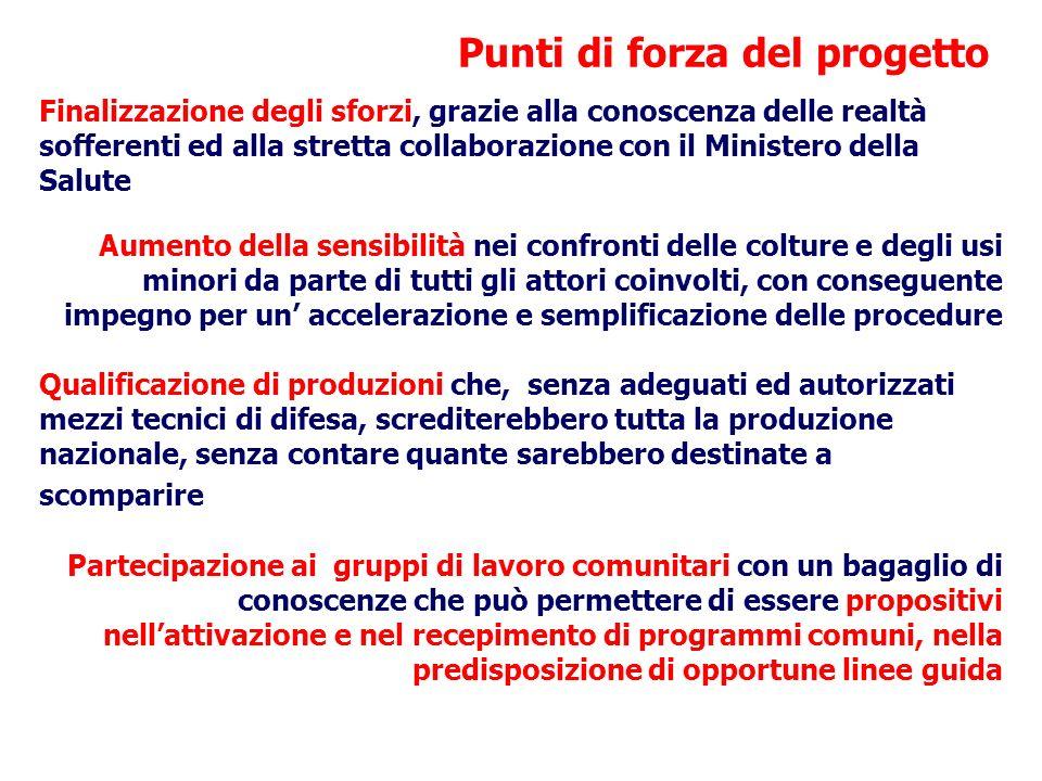 Punti di forza del progetto Finalizzazione degli sforzi, grazie alla conoscenza delle realtà sofferenti ed alla stretta collaborazione con il Minister
