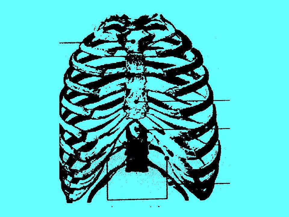 PNEUMOTORACE IPERTESO Aria intrappolata nel cavo pleurico Aumento della pressione nellemitorace affetto Deviazione del mediastino con ostruzione cavale Ipotensione Arresto c.r.