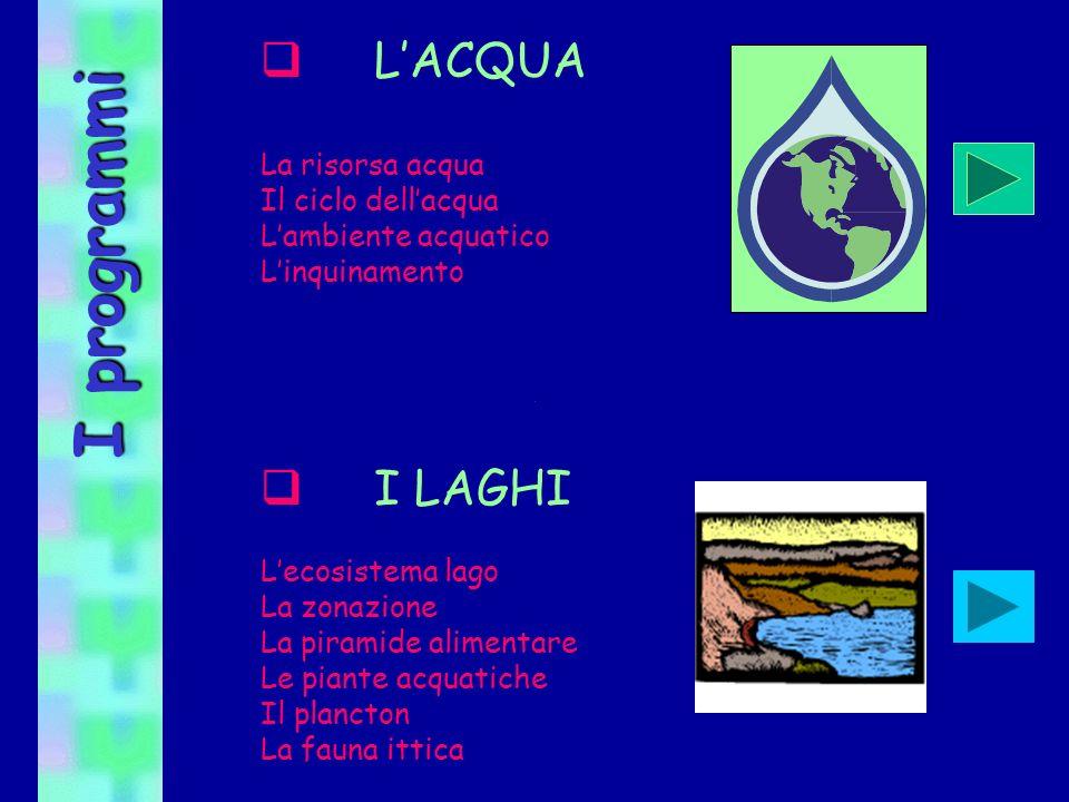 I programmi LACQUA La risorsa acqua Il ciclo dellacqua Lambiente acquatico Linquinamento I LAGHI Lecosistema lago La zonazione La piramide alimentare