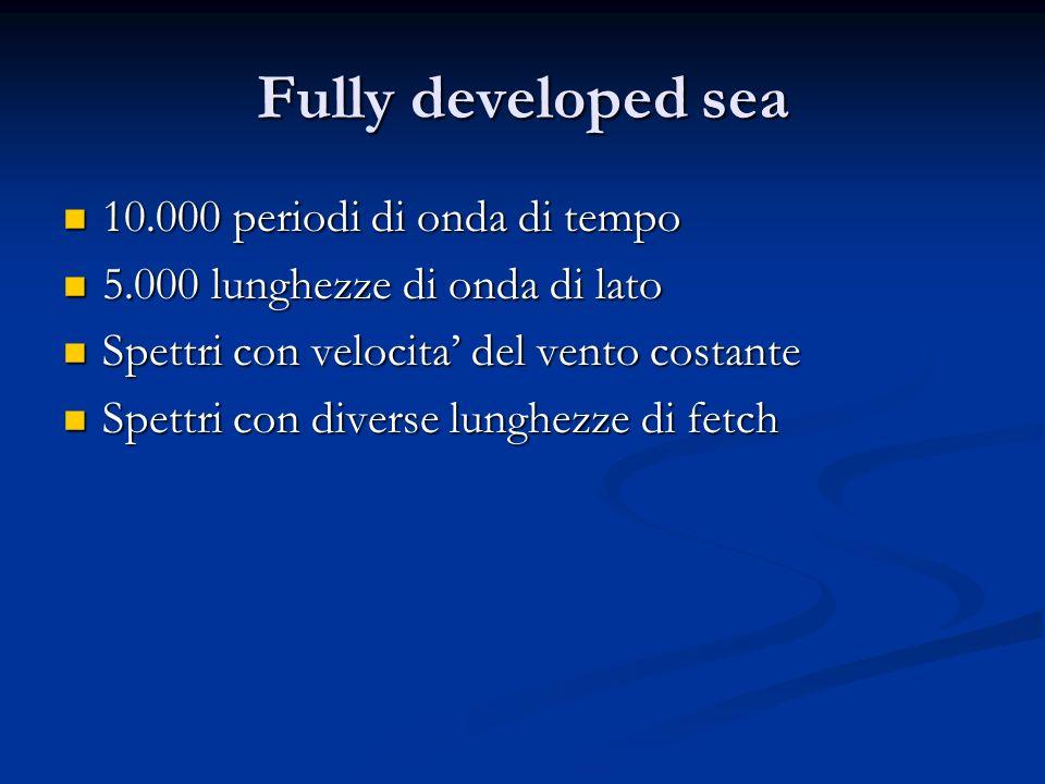 Fully developed sea 10.000 periodi di onda di tempo 10.000 periodi di onda di tempo 5.000 lunghezze di onda di lato 5.000 lunghezze di onda di lato Sp
