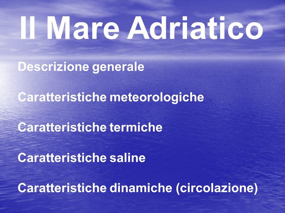 Il Mare Adriatico Descrizione generale Caratteristiche meteorologiche Caratteristiche termiche Caratteristiche saline Caratteristiche dinamiche (circo