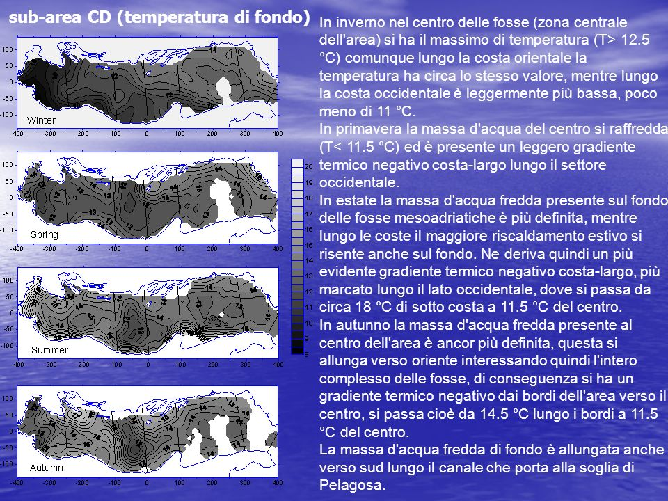 sub-area CD (temperatura di fondo) In inverno nel centro delle fosse (zona centrale dell'area) si ha il massimo di temperatura (T> 12.5 °C) comunque l