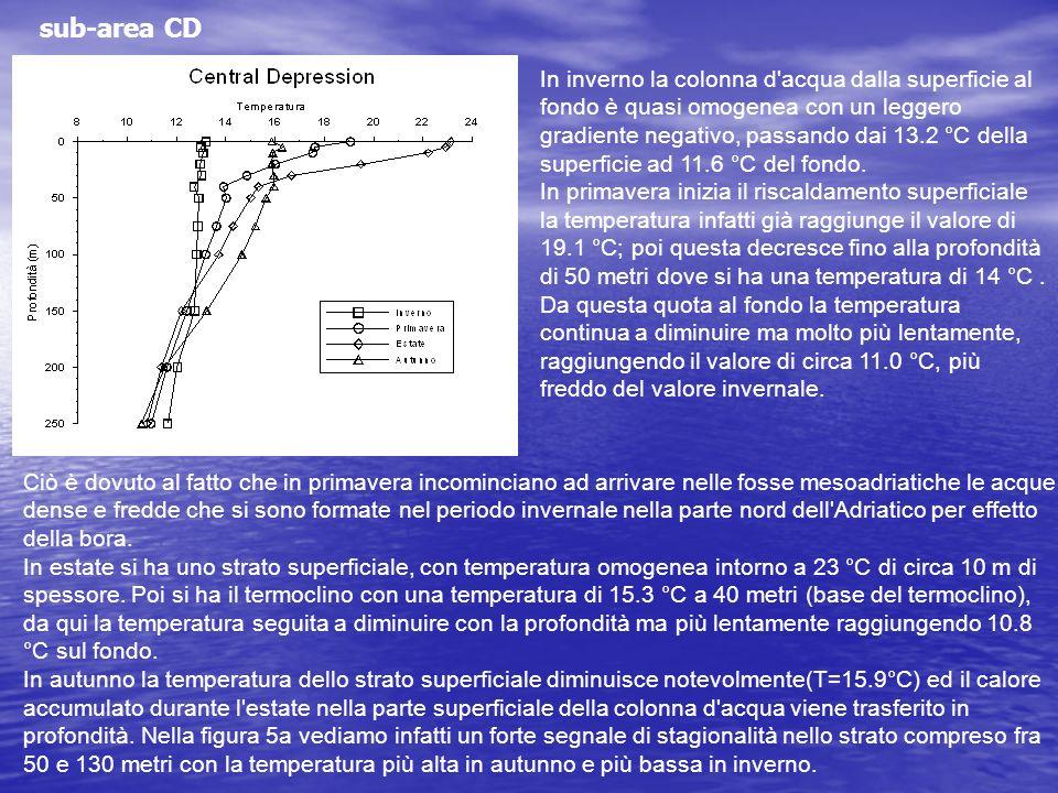 sub-area CD In inverno la colonna d'acqua dalla superficie al fondo è quasi omogenea con un leggero gradiente negativo, passando dai 13.2 °C della sup