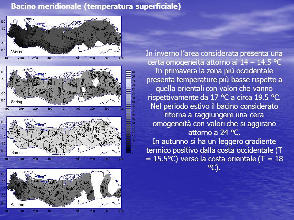Bacino meridionale (temperatura superficiale) In inverno larea considerata presenta una certa omogeneità attorno ai 14 – 14.5 °C In primavera la zona