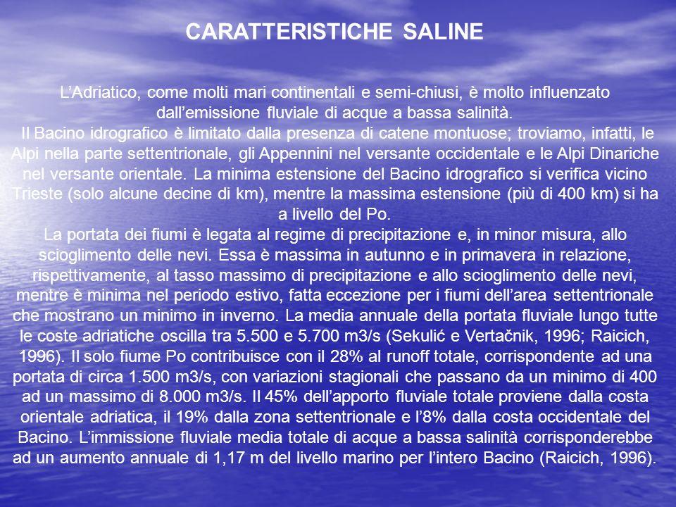 CARATTERISTICHE SALINE LAdriatico, come molti mari continentali e semi-chiusi, è molto influenzato dallemissione fluviale di acque a bassa salinità. I