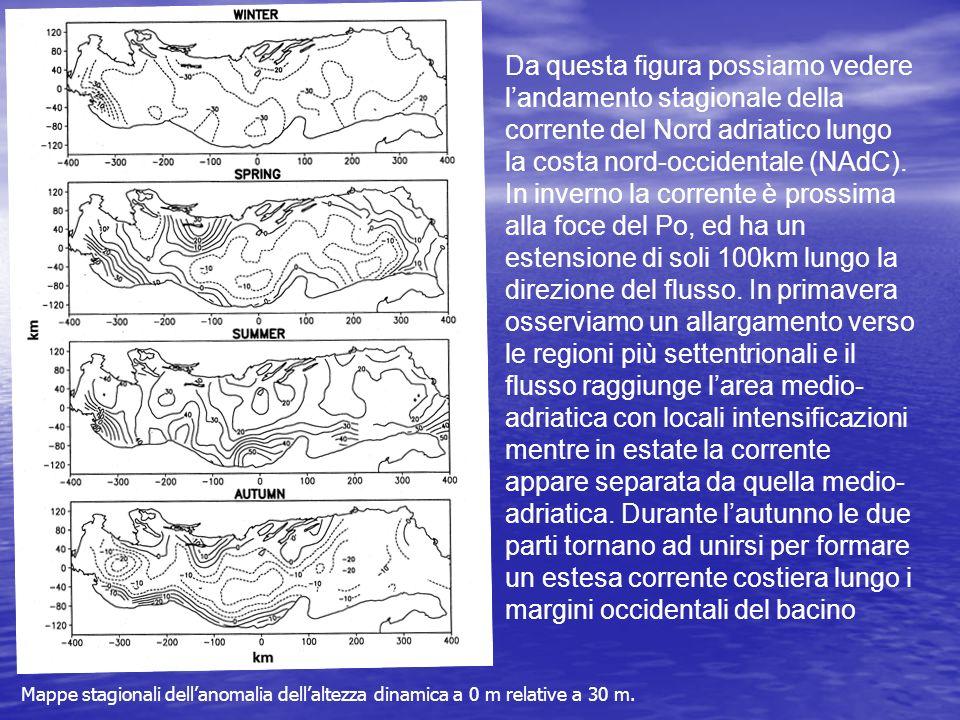 Mappe stagionali dellanomalia dellaltezza dinamica a 0 m relative a 30 m. Da questa figura possiamo vedere landamento stagionale della corrente del No