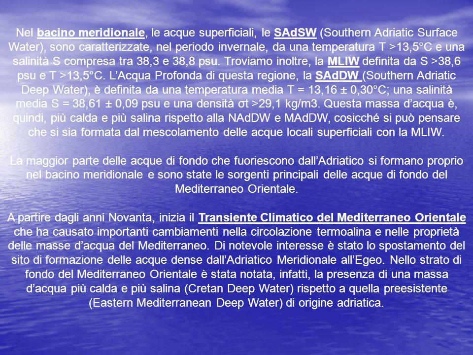 Nel bacino meridionale, le acque superficiali, le SAdSW (Southern Adriatic Surface Water), sono caratterizzate, nel periodo invernale, da una temperat