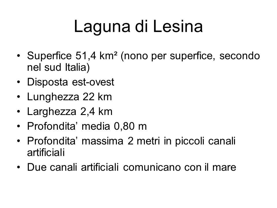 Laguna di Lesina Superfice 51,4 km² (nono per superfice, secondo nel sud Italia) Disposta est-ovest Lunghezza 22 km Larghezza 2,4 km Profondita media 0,80 m Profondita massima 2 metri in piccoli canali artificiali Due canali artificiali comunicano con il mare