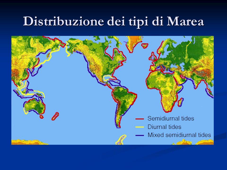 Distribuzione dei tipi di Marea