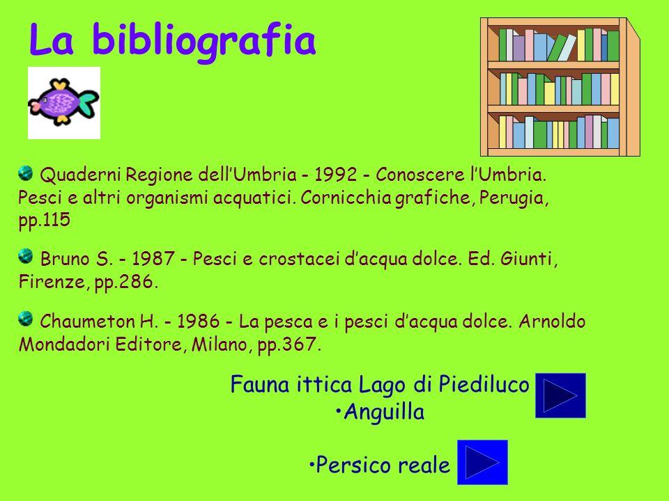 La bibliografia Quaderni Regione dellUmbria - 1992 - Conoscere lUmbria. Pesci e altri organismi acquatici. Cornicchia grafiche, Perugia, pp.115 Bruno
