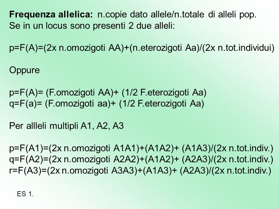 Frequenza allelica: n.copie dato allele/n.totale di alleli pop. Se in un locus sono presenti 2 due alleli: p=F(A)=(2x n.omozigoti AA)+(n.eterozigoti A