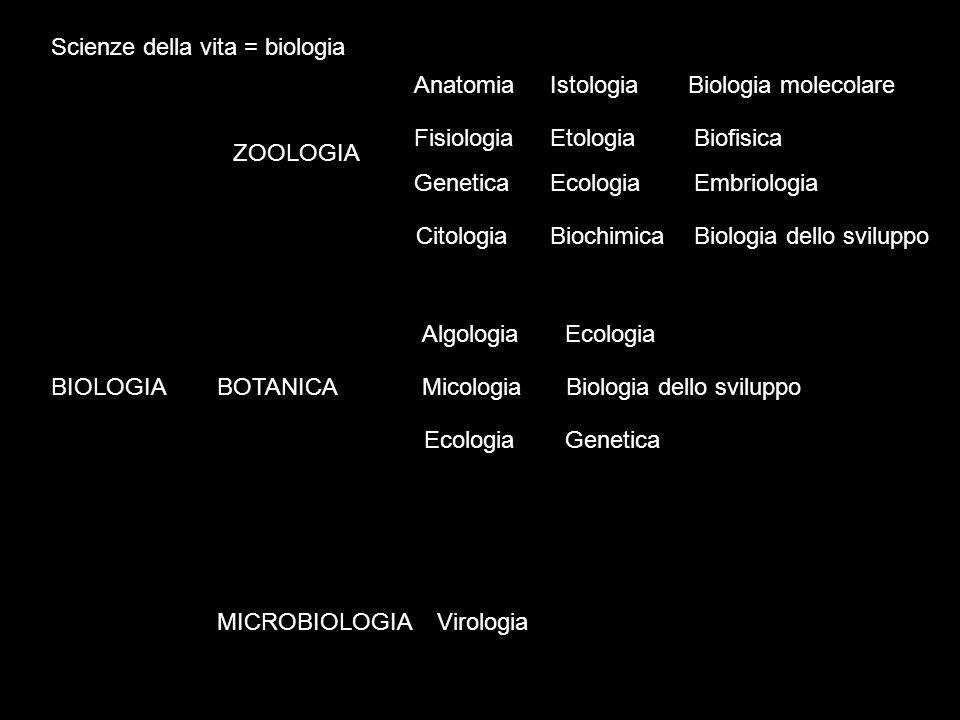Scienze della vita = biologia BIOLOGIA ZOOLOGIA BOTANICA MICROBIOLOGIA Anatomia Fisiologia Genetica Citologia Istologia Etologia Ecologia Biochimica B