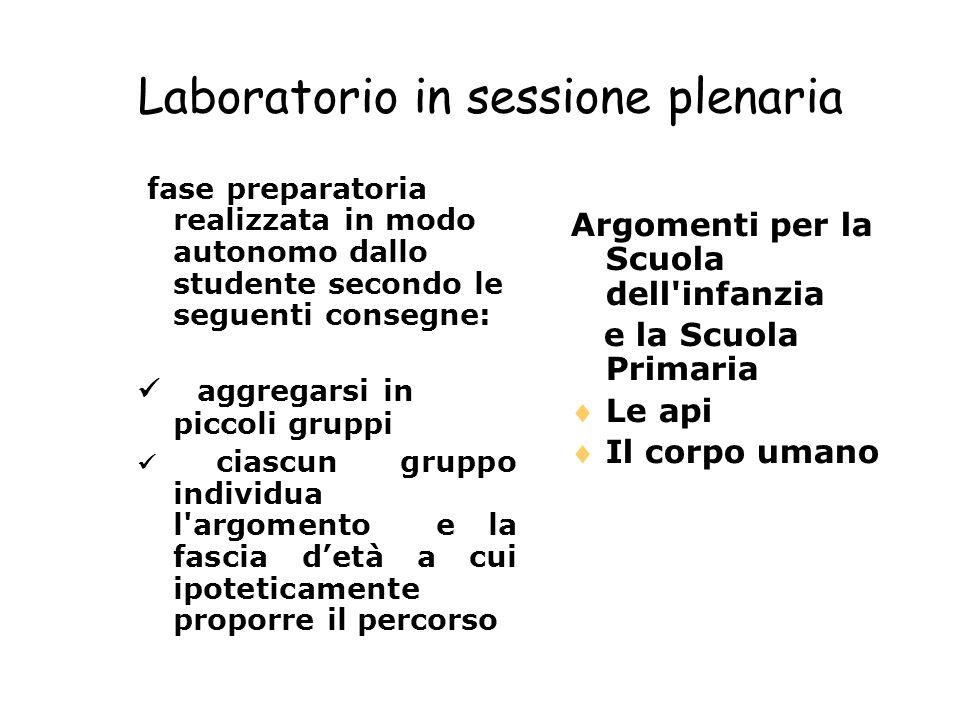 Laboratorio in sessione plenaria fase preparatoria realizzata in modo autonomo dallo studente secondo le seguenti consegne: aggregarsi in piccoli grup