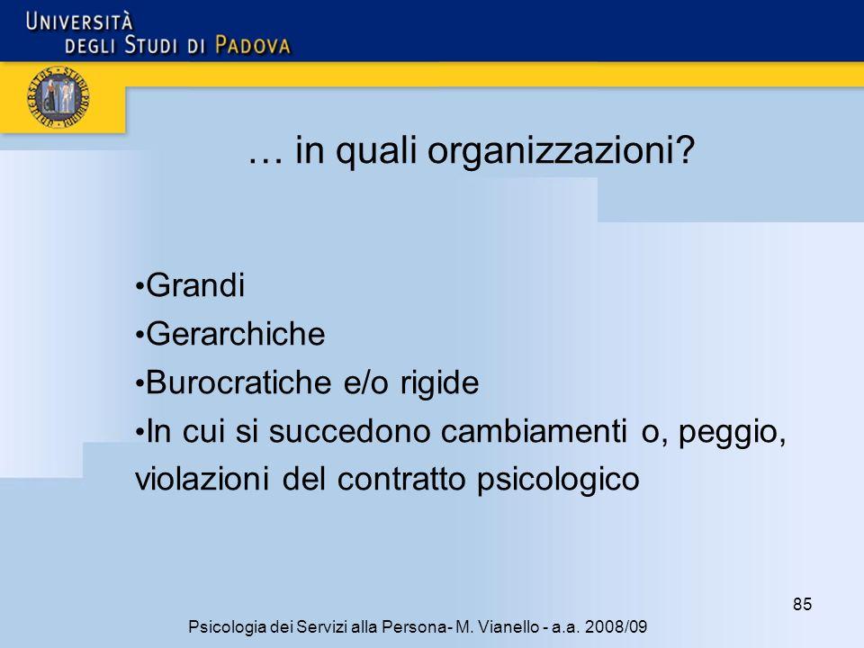 85 Psicologia dei Servizi alla Persona- M.Vianello - a.a.