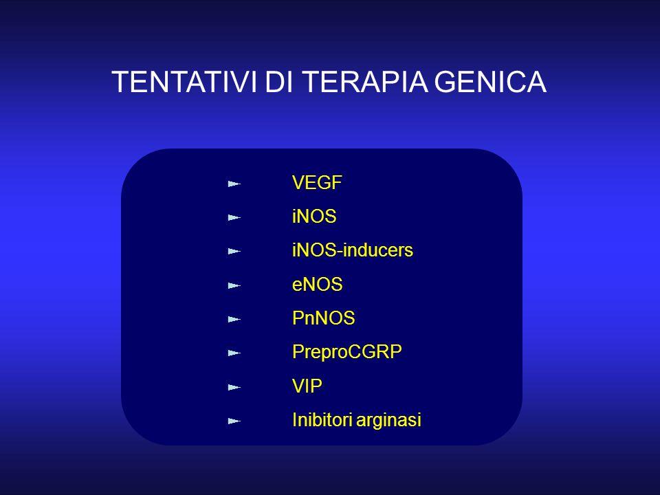 TENTATIVI DI TERAPIA GENICA VEGF iNOS iNOS-inducers eNOS PnNOS PreproCGRP VIP Inibitori arginasi