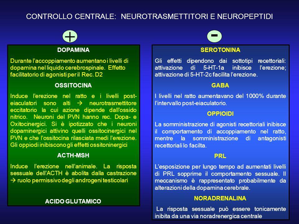 CONTROLLO CENTRALE: NEUROTRASMETTITORI E NEUROPEPTIDI DOPAMINA Durante laccoppiamento aumentano i livelli di dopamina nel liquido cerebrospinale.