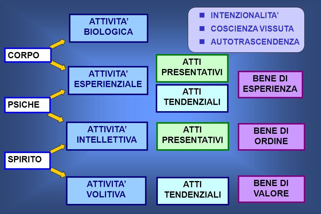 ATTIVITA BIOLOGICA ATTIVITA ESPERIENZIALE ATTIVITA INTELLETTIVA ATTIVITA VOLITIVA ATTI PRESENTATIVI ATTI TENDENZIALI ATTI PRESENTATIVI ATTI TENDENZIAL