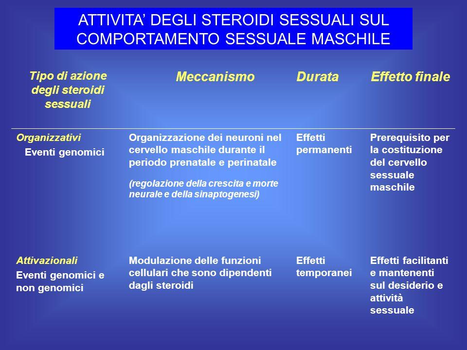 ATTIVITA DEGLI STEROIDI SESSUALI SUL COMPORTAMENTO SESSUALE MASCHILE Effetti facilitanti e mantenenti sul desiderio e attività sessuale Effetti tempor