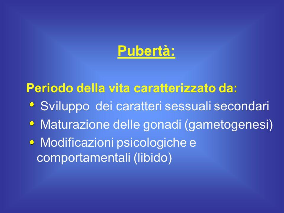 Pubertà: Periodo della vita caratterizzato da: Sviluppo dei caratteri sessuali secondari Maturazione delle gonadi (gametogenesi) Modificazioni psicolo