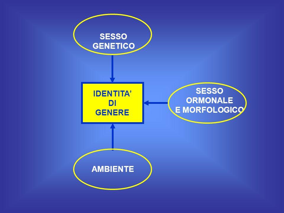 IDENTITA DI GENERE SESSO ORMONALE E MORFOLOGICO SESSO GENETICO AMBIENTE