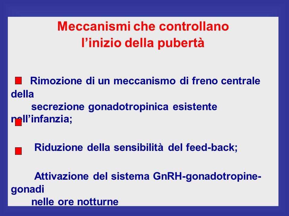 Meccanismi che controllano linizio della pubertà Rimozione di un meccanismo di freno centrale della secrezione gonadotropinica esistente nellinfanzia; Riduzione della sensibilità del feed-back; Attivazione del sistema GnRH-gonadotropine- gonadi nelle ore notturne