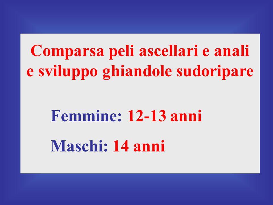 Comparsa peli ascellari e anali e sviluppo ghiandole sudoripare Femmine: 12-13 anni Maschi: 14 anni