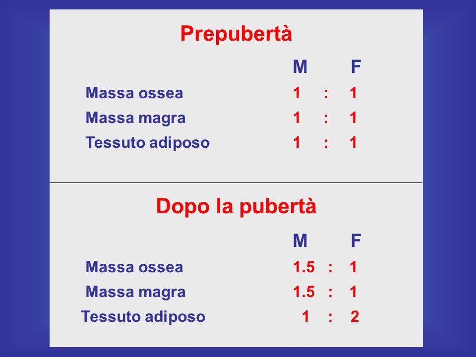 Prepubertà M F Massa ossea1 : 1 Massa magra1 : 1 Tessuto adiposo1 : 1 Dopo la pubertà M F Massa ossea1.5 : 1 Massa magra1.5 : 1 Tessuto adiposo 1 : 2