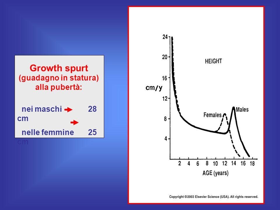 Growth spurt (guadagno in statura) alla pubertà: nei maschi 28 cm nelle femmine 25 cm