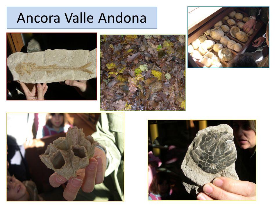 Ancora Valle Andona