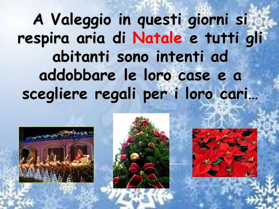 A Valeggio in questi giorni si respira aria di Natale e tutti gli abitanti sono intenti ad addobbare le loro case e a scegliere regali per i loro cari