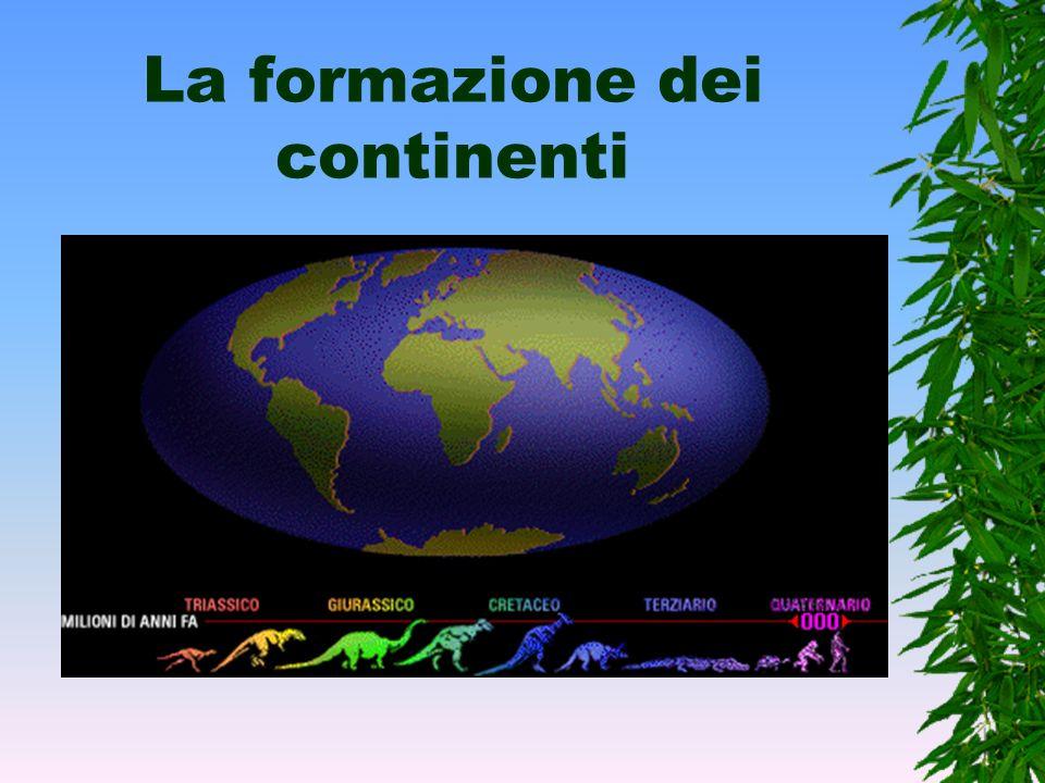 Laspetto della Terra Ma com'era l'aspetto della terra 230 milioni di anni fa? Irriconoscibile. Come si vede nelle immagini, i continenti hanno forme e