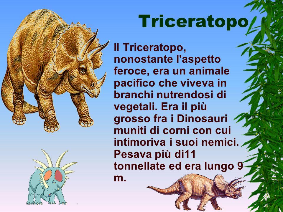 Brontosauro Il Brontosauro o Apatosauro aveva un collo lungo e grosso che lo caratterizzava, era lungo più di 21 m e si nutriva di vegetali di ogni ti