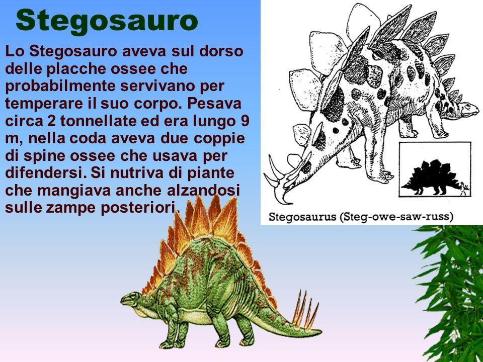 Triceratopo Il Triceratopo, nonostante l'aspetto feroce, era un animale pacifico che viveva in branchi nutrendosi di vegetali. Era il più grosso fra i