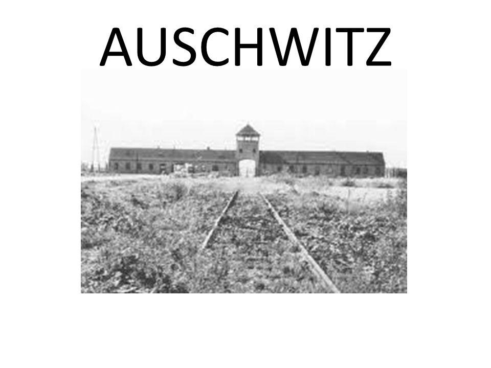 Quindi,dal 1932/33, quando Hitler è salito al potere in Germania, la prima cosa che cominciò a fare fu quella di perseguitare gli ebrei.