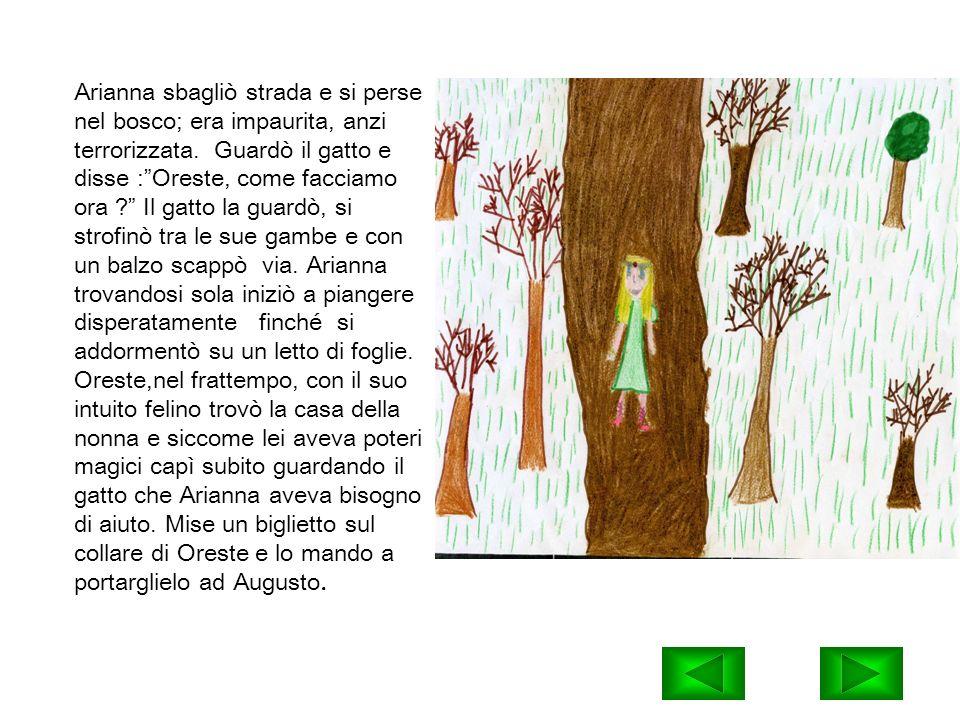Arianna sbagliò strada e si perse nel bosco; era impaurita, anzi terrorizzata.