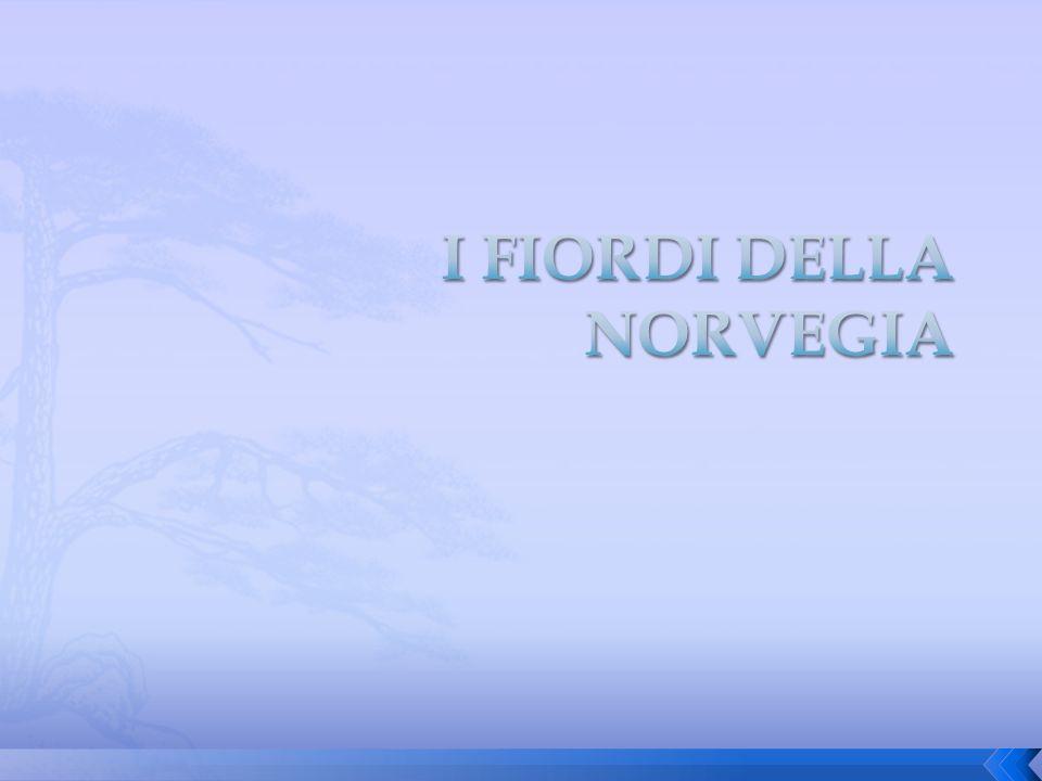Un fiordo (dal norvegese fjord, da una radice indoeuropea che significa approdo ) è un braccio di mare che si insinua nella costa (anche per vari km) inondando un antica valle glaciale o fluviale.