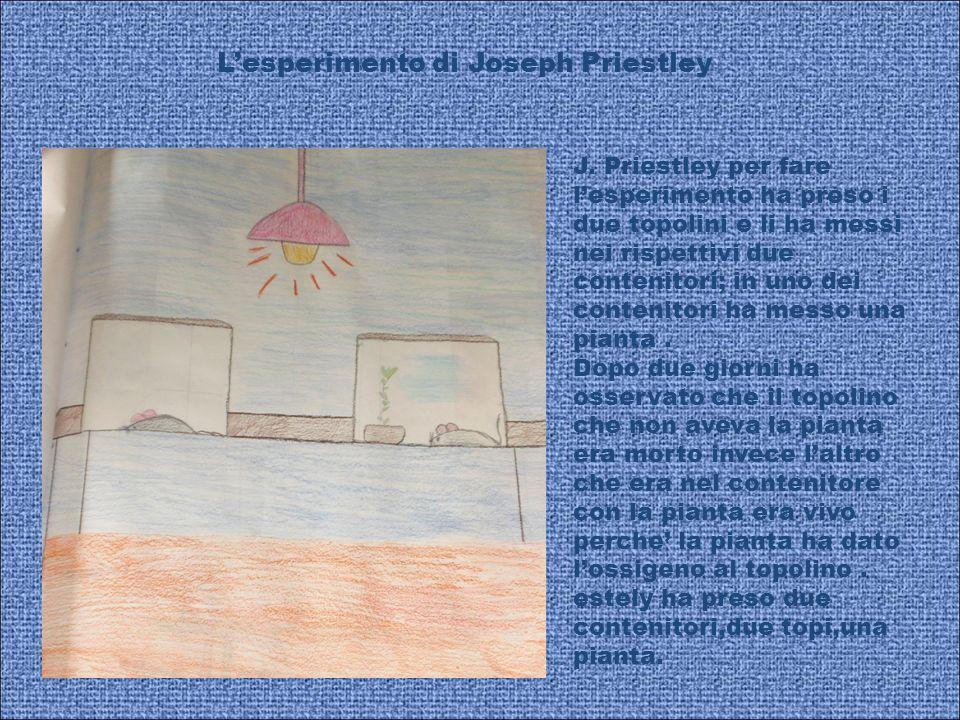 Lesperimento di Joseph Priestley J. Priestley per fare lesperimento ha preso i due topolini e li ha messi nei rispettivi due contenitori; in uno dei c