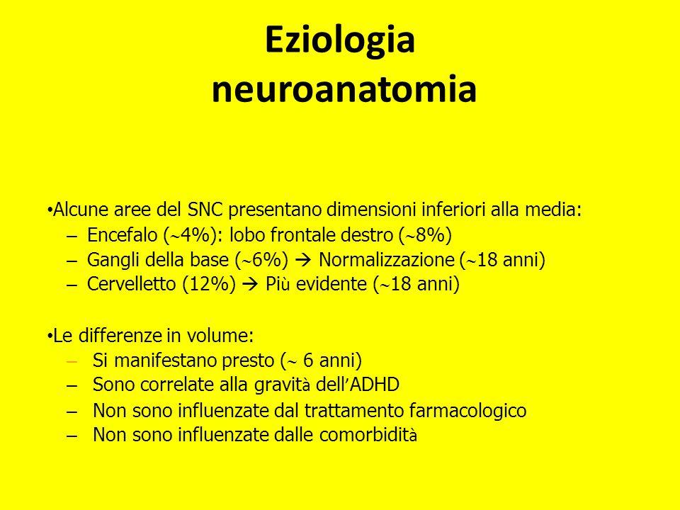 Alcune aree del SNC presentano dimensioni inferiori alla media: – Encefalo ( 4%): lobo frontale destro ( 8%) – Gangli della base ( 6%) Normalizzazione