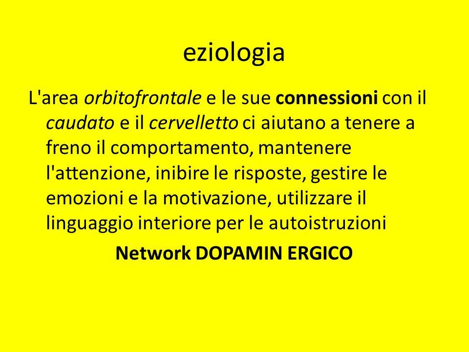 eziologia L'area orbitofrontale e le sue connessioni con il caudato e il cervelletto ci aiutano a tenere a freno il comportamento, mantenere l'attenzi