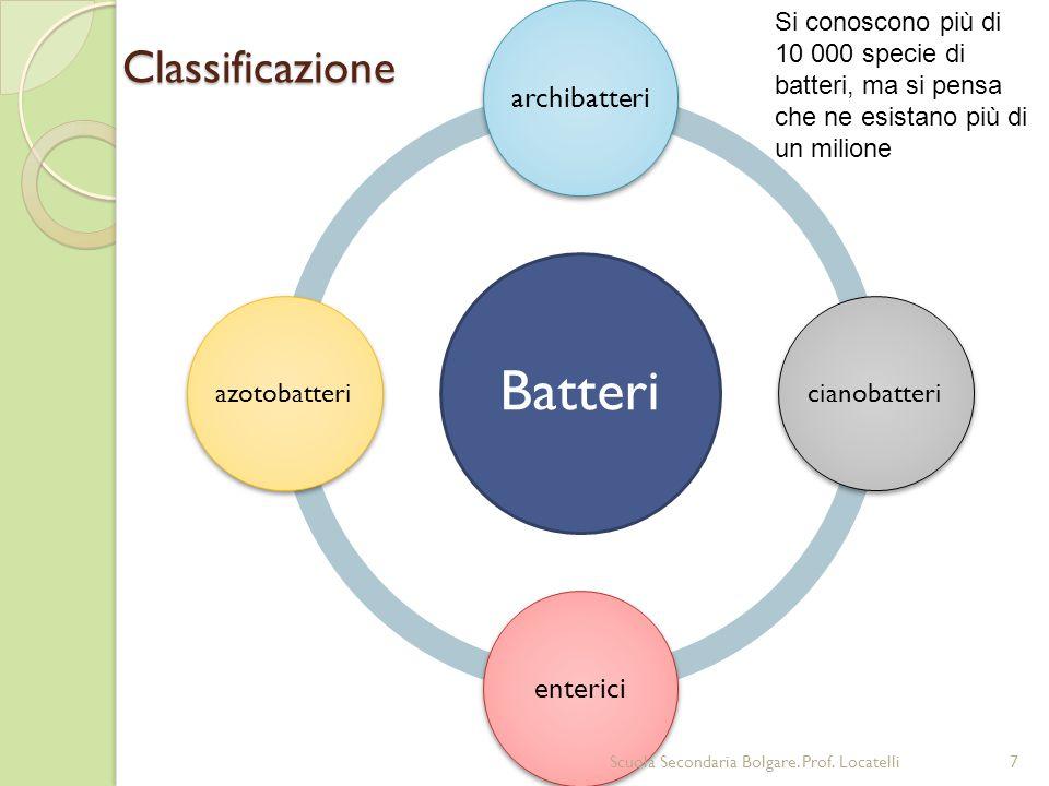Batteri archibatteri cianobatteri enterici azotobatteriClassificazione Si conoscono più di 10 000 specie di batteri, ma si pensa che ne esistano più d