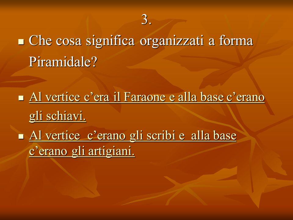 3. Che cosa significa organizzati a forma Che cosa significa organizzati a formaPiramidale.