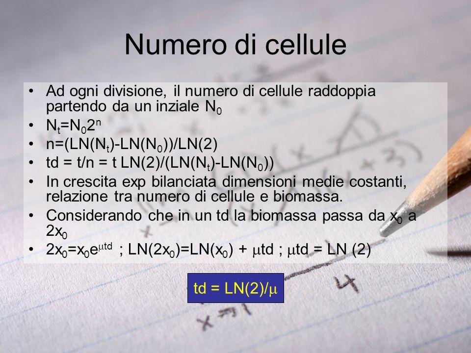 td = LN(2)/ Ad ogni divisione, il numero di cellule raddoppia partendo da un inziale N 0 N t =N 0 2 n n=(LN(N t )-LN(N 0 ))/LN(2) td = t/n = t LN(2)/(