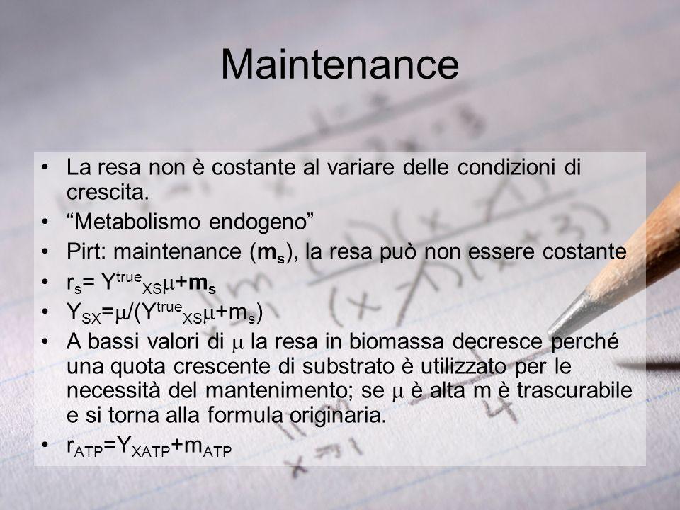 Maintenance La resa non è costante al variare delle condizioni di crescita. Metabolismo endogeno Pirt: maintenance (m s ), la resa può non essere cost
