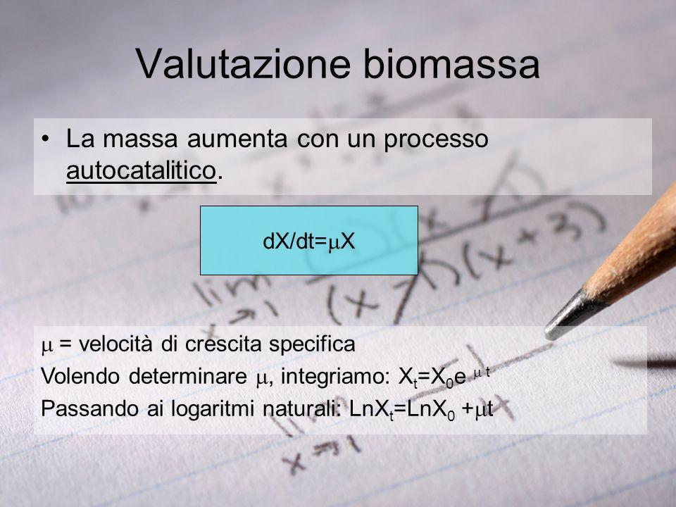 Chemostato ( Ж ) d(c s,i )/dt=-r s,i x + D(c f s,i - c s,i ) dx/dt= x-Dx; dx/dt = ( -D)x =D x = Y SX (c f s -c s ): è possibile misurare precisamente la resa (la derivata (Ж)=0, Y SX = /r s ) c s =DK s /( max -D): la concentrazione del substrato limitante aumenta con D Calcolo maintenance: x = D (c f s,i - c s,i )/(Y true XS D +m s ), regressione lineare.