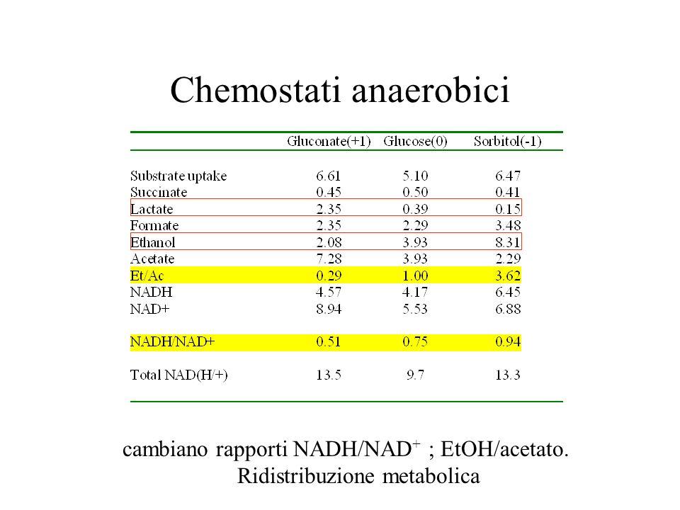 Chemostati anaerobici cambiano rapporti NADH/NAD + ; EtOH/acetato. Ridistribuzione metabolica