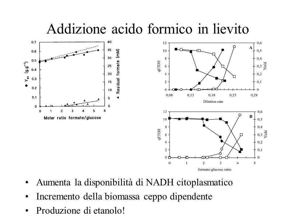 Addizione acido formico in lievito Aumenta la disponibilità di NADH citoplasmatico Incremento della biomassa ceppo dipendente Produzione di etanolo!
